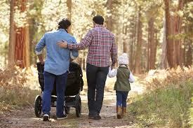 Alabama bans gay adoption