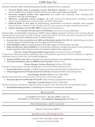 resume sample senior sales executive page 2 best executive resume format