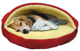 small dog beds on sale. Beautiful Small Dog For Small Beds On Sale T