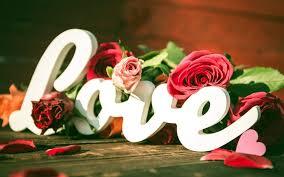 love flowers wallpapers 268751