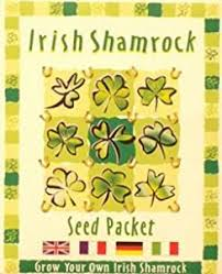 Small Picture Amazoncom The Shamrock Gift Shamrocks Seeds by The Shamrock Gift