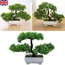 office bonsai tree. Modren Bonsai UK Bonsai Tree Pot Artificial Plant GuestGreeting Pine Decorate For Home  Office In