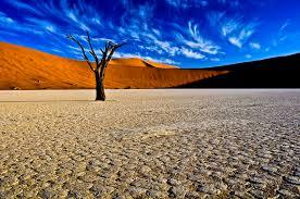 Resultado de imagen para Deadvlei, Namibia