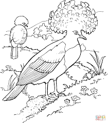 Small Picture Goura or Crowned Pigeons coloring page Free Printable Coloring Pages