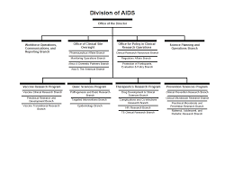 Division Of Aids Organization Chart | Nih: National Institute Of ...