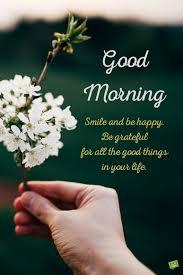 good morning image for whatsapp