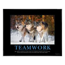 classic motivational posters framed motivational posters motivational posters teamwork wolves motivational poster