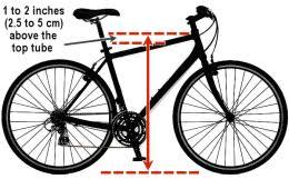 Good Bike Fit Fundamentals Gobiking Ca