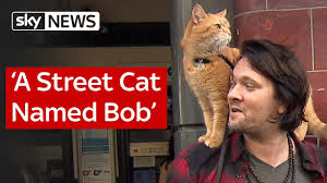 A Street Cat Named Bob - YouTube
