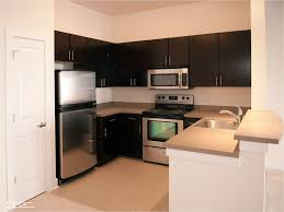 interior design ideas kitchen. Fabulous Small Apartment Kitchen Design Ideas On Interior Decor Home With N