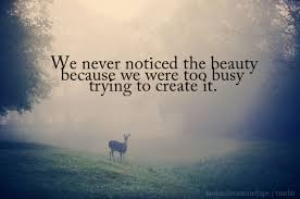 Beauty Of Nature Quote Best Of Animals Artifice Beauty Inspirational Landscape Inspiring