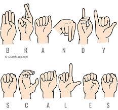 Brandy Scales - Public Records