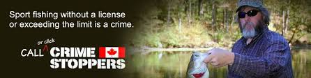 Association Stoppers Officers Conservation Ontario Crime
