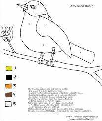 Small Picture Robin Coloring Page Cartoon Coloring Pages And Robin Page Robins