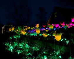 Botanical Gardens Nights Of Lights Tower Hill Botanic Garden Small Lights Christopher