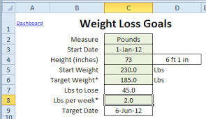 isagenix measurement tracker excel weight loss tracker