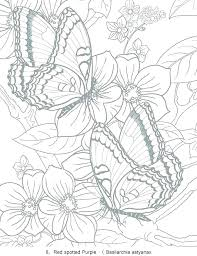 Free Flower Coloring Pages For Adults Garden Flowers Coloring Pages