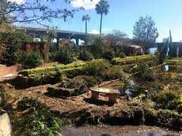 among the casualties of hurricane irma s storm surge in jacksonville are the historic gardens at the riverfront mer museum of art gardens