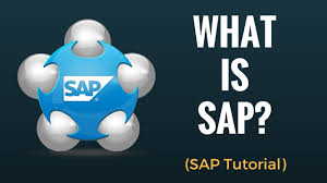 What is SAP? Why do we need ERP? Beginner Tutorial - YouTube