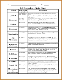 Cells And Organelles Worksheet Answers Worksheets for all ...