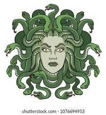 Medusa Head High Res Stock Images | Shutterstock
