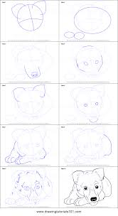 Small Picture How to Draw German Shepherd Puppy printable step by step drawing