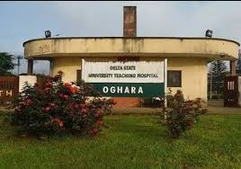 Image result for Delsuth and Okowa pic