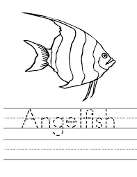 Small Picture Angel Fish Worksheet Coloring Page Coloring Sky