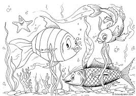 Small Picture Free Printable Fish Coloring Pages For Kids