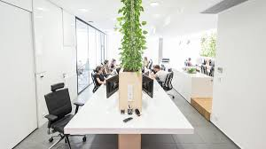 modern office plants. Modern Office Interior With Indoor Plants E