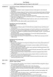 Finance Manager Resume Sample Senior Finance Manager Resume Samples Velvet Jobs 27