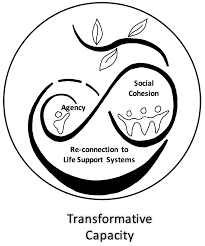 Sustainability Free Full Text Moving From Adaptive To