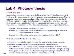 ap biology lab review ppt video online  lab 4 photosynthesis essay 2004 part 1