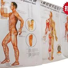 Acupuncture Meridian Chart Free Download Buy Acupuncture Point Map And Get Free Shipping On Aliexpress
