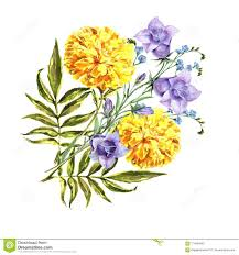 Marigold Floral Design Watercolor Bouquet Bell Flowers With Marigold Floral