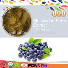 Blushwood berry buy online