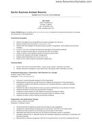 ... Professional Business Resume 3 Templates 2 Sample Format And Maker ...