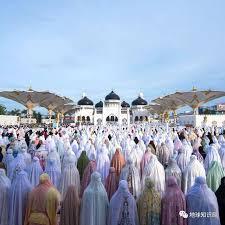 印尼,疯狂开发苏门答腊 地球知识局- 全网搜