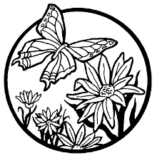 Small Picture Butterfly Garden Coloring Pages Free Printable Butterfly