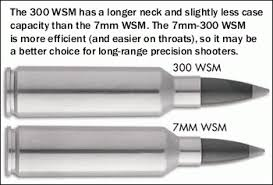 7 Wsm Ballistics Chart 7mm Cartridge Guide Within Accurateshooter Com
