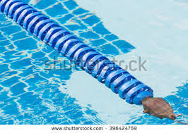 blue color plastic swimming pool lane rope floating on water surface 396424759