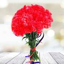 red carnations birthday chikkadpally hyderabad