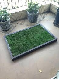 patio dog potty diy ideas dog patio potty and dog grass pad filled with real dog patio dog potty diy