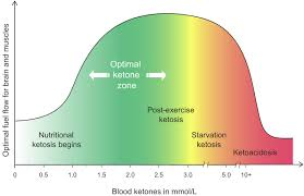 What Is Ketosis Is It Safe Diet Doctor