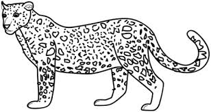 Small Picture 16 leopard coloring page Print Color Craft