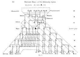 Anthropology Kinship Chart 66 Paradigmatic Kinship Diagram Example