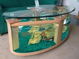 amazing unusual fish tank large oval coffee table aquarium glass uk australium shaped marine bettum