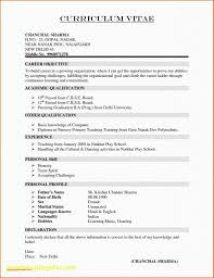 Simple One Page Resume Examples Beautiful Photos 41 Resume In E Page