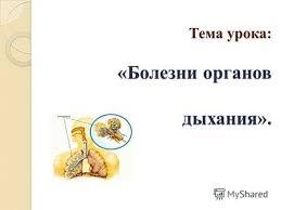 Презентация на тему Профилактика болезней органов дыхания  Тема урока Болезни органов дыхания Тема урока Болезни органов дыхания