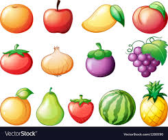 pictures of different fruit. Contemporary Different Different Kinds Of Fruits Vector Image To Pictures Of Fruit O